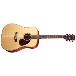 גיטרה אקוסטית מוגברת +פיקאפ פישמן CORT EARTH100F