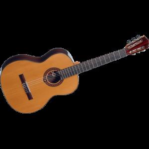 גיטרה קלאסית LAG OC300